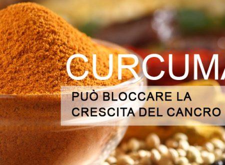 Studio Scientifico: La Curcuma può bloccare naturalmente la crescita del cancro
