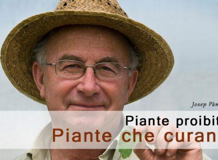 Le piante proibite, piante che curano. Intervista a Josep Pàmies