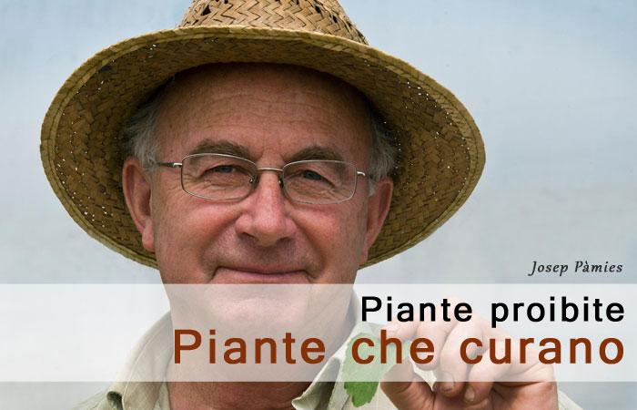 piante proibite, piante che curano