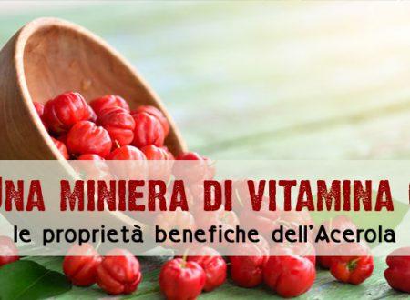 Acerola, una miniera di vitamina C